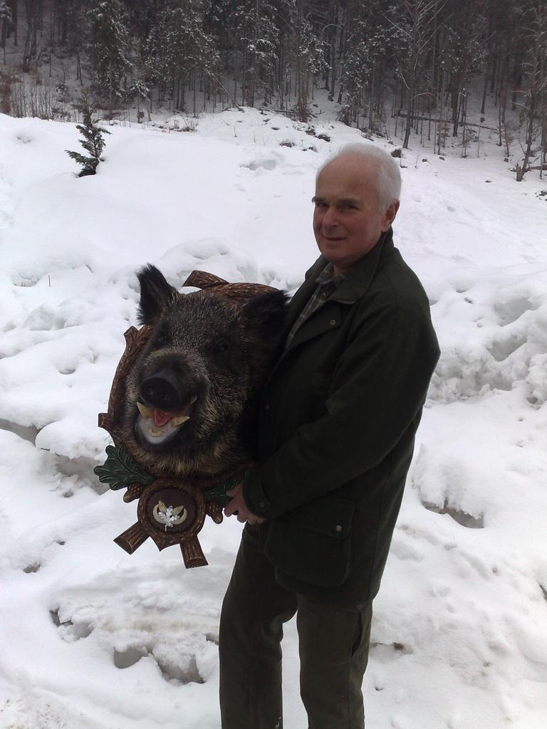 Wildschwein aus dem Gailtal