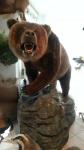 Großer russischer Bär