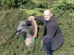 Wildschwein vom Großglockner